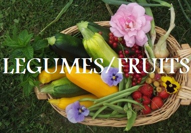 LÉGUMES & FRUITS
